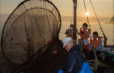 Sunrise fixed-net fishing